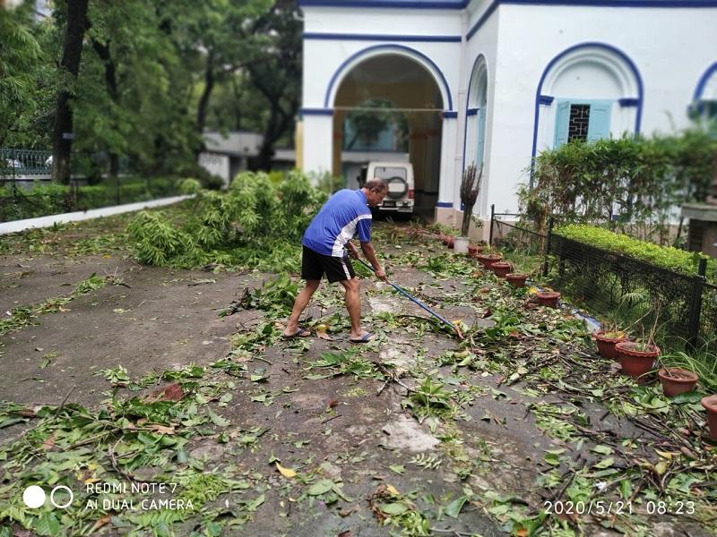 India casa obispo toda llena de hojas web