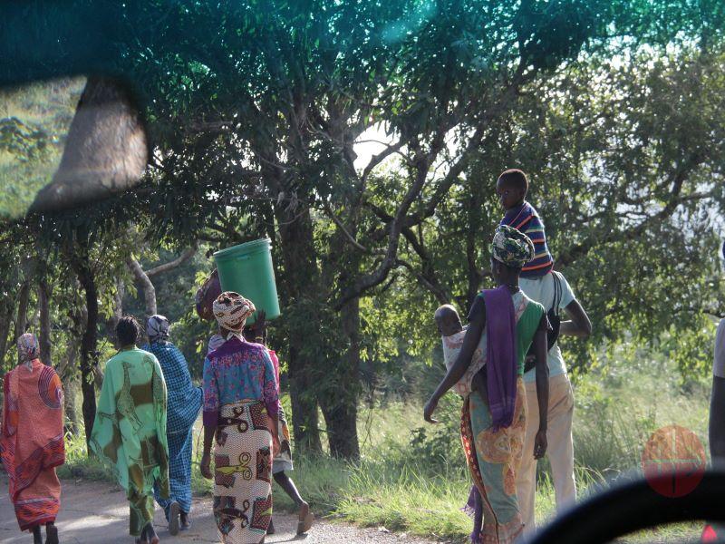 Mozambique personas caminando por la selva para web