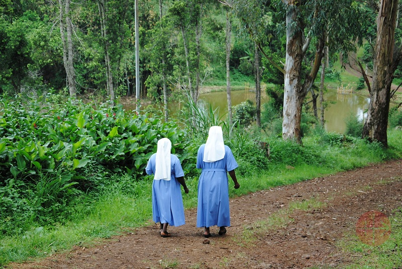 Congo Bukavu religiosas caminando en la selva web